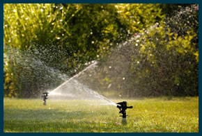 Cape Cod Landscaping Maintenance & Irrigation